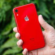 Sửa iPhone XR không nhận sạc: Am hiểu chuyên sâu, giải quyết dứt điểm !